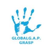 Global GAP GRASP Certificaciones | Virú Naturally ahead