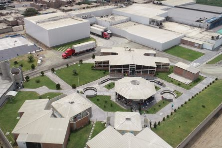 Processing plant: Peru, Chincha   Virú Naturally ahead