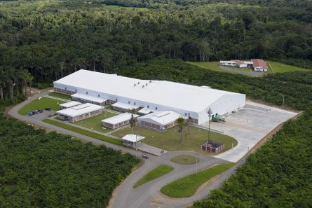 Processing plant: Peru, Tarapoto   Virú Naturally ahead